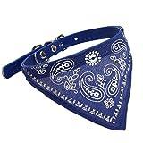 Animally® Hundehalsband - Halsband mit Dreieckstuch (M, Blau)