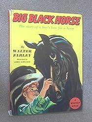 Big Black Horse