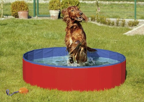 Karlie - Doggy Pool - Blau/Rot 80 x 20cm