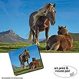 Set Regalo: 1 Póster Impresión Artística (120x80 cm) + 1 Alfombrilla Para Ratón (23x19 cm) - Caballos, Ponis Pottoka En El Pais Vasco