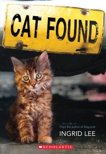 Cat Found (Feral Cat House)
