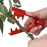 Somedays - Pinza levaspine da giardinaggio, per rimuovere foglie e spine dallo stelo dei fiori, in metallo Red