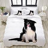 LIASDIVA Bettwäsche-Set, Mikrofaser,Hundeporträt von reinrassigem Border Collie White Animal Black Canine Schnitt Tier heraus,1 Bettbezug 135 x 200cm+ 2 Kopfkissenbezug 80x80cm