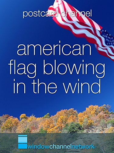 American Flag blowing in the wind [OV]