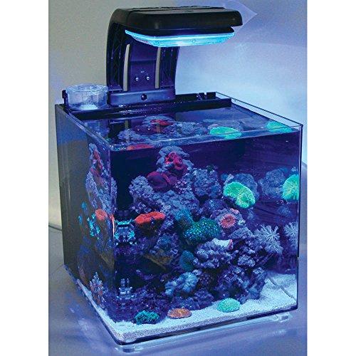 TMC MicroHabitat 30 Nano-Meerwasseraquarium 30 l, komplett