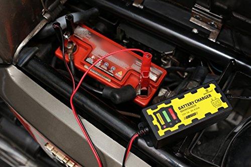 LGVSHOPPING Caricabatterie mantenitore Batteria 6V 12V 1A con cavetti per Auto Moto