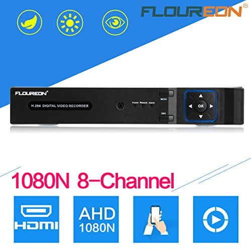Recorder Sicherheit Video (FLOUREON 7808N 8CH AHD NVR DVR 5 IN 1 TVI 1080N Video Recorder PTZ H.264 P2P HDMI CCTV Sicherheit Videoüberwachung Motion Alarm Email Alarm)