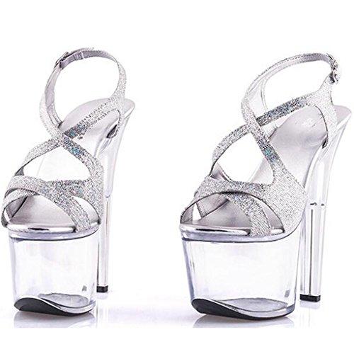 W&LMAlto tacco alto sandali Tacchi alti Scarpe Trasparente Scarpe di cristallo Piattaforma impermeabile Spessore inferiore Scarpe modello silver 17cm