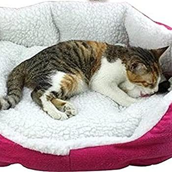JUYUAN-EU Coussins pour chien Panier pour chat Cushion Chiot Chambres Sleeping doux Matelas