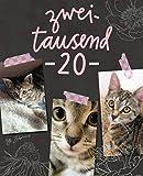 Terminplaner 2020: Monats- und Wochenkalender für Katzenfreunde, Titel mit Fotos von Tigerkätzchen Lotta Zaubermaus - miniKatz Papers, Sylvia Kepler-Albert