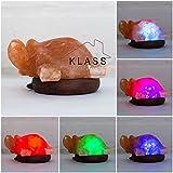 De sal de roca del Himalaya Natural LED Multi Color USB lámpara forma de animales por KLASS Home Collection® (tortuga)
