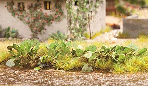 Ziterdes 79554 Pestwurz, 18 Pflanzen, Laser Cut Minis