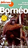 Petit Futé Bornéo