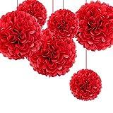 iShine 8er Set Seidenpapier PomPoms (Rote weiß Rosa Elfenbein) für Hochzeit Party Deko