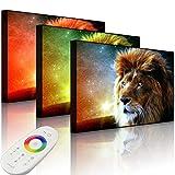 Lightbox-Multicolor | Bild mit LED Beleuchtung | Löwe Abstrakt Art | 100x70 cm | Front Lighted