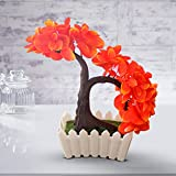 [Sponsored]TiedRibbons® Artficial Bonsai Indoor Plants | Artificial Plant For Balcony | Bonsai Indoor Plants For Home | Diwali Gifts For Home