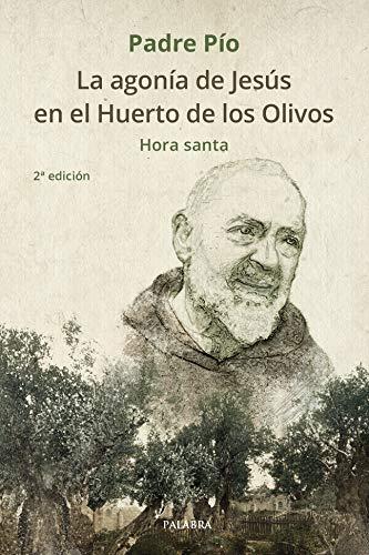 La agonía de Jesús en el Huerto de los Olivos. Hora santa (dBolsillo nº 884)