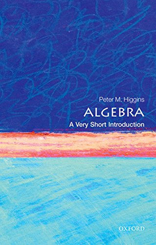 Algebra: A Very Short Introduction (Very Short Introductions) (English Edition)