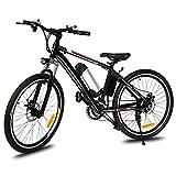 AMDirect 26 Zoll Elektrofahrad E Bike Pedelec Mountainbike mit Abnehmbaren Lithium-Akku (250W, 36V), Ladegerät