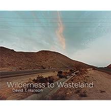 David T. Hanson - Wilderness to Wasteland