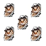 5PCS 3D Wand-Aufkleber Nette Katzen-Hundeaufkleber Toilettenaufkleber Kühlschrank Aufkleber Toilettendeckelabziehbilder