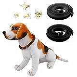 Anti-Floh- und Zeckenhalsband für Hunde, Größe L, 65 cm, ungiftig –wasserbeständig, gegen Insekten und Moskitos