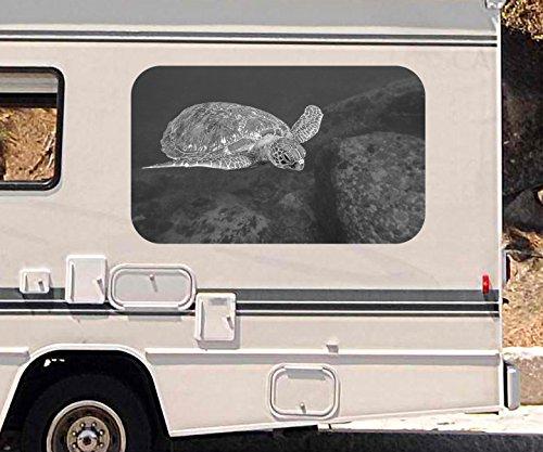 3D Autoaufkleber Schildkröte Ozean tauchen Wasser schwarz weiß Wohnmobil Auto KFZ Fenster Sticker Aufkleber 21A852, Größe 3D sticker:ca. 45cmx27cm (Aufkleber Schildkröte Auto)