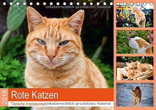 Preisvergleich Produktbild Rote Katzen 2018. Tierische Impressionen (Tischkalender 2018 DIN A5 quer): 12 abwechslungsreiche Bilder von rot getigerten Katzen. (Monatskalender, 14 Seiten ) (CALVENDO Tiere)