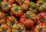 10 Samen RAF Tomate Sorte Tamano Grande, old spanish heirloom tomato, aus Andalusien, Südspanien