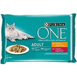 Purina One Umido Gatto Adult Filettini in Salsa con Pollo e Fagiolini, con Manzo e Carote, 48 Buste da 85 g Ciascuna, 12 Confezione da 4 x 85 g