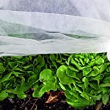 Noor Gartenvlies Schutzvlies 1,5x10m 15gr Frühbeetvlies Pflanzenvlies zur Ernteverfrühung aus 100% PP-Vlies