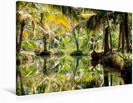 Premium Textile Toile 45 cm x 30 cm paysage de de de palmiers sur l'île Monroe, 75 x 50 cm | Pratique Et économique  2a5474