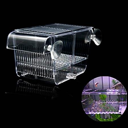 boxtech Breeding Box, Transparent Zucht Tanks, Brutkasten Zuchttanks für Aquarien Kleine Babyfische Garnelen (S: 132 x…
