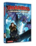 Dragons: I Paladini di Berk - Volume 2 (2 DVD)