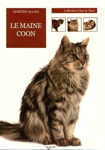 Le chat Maine Coon