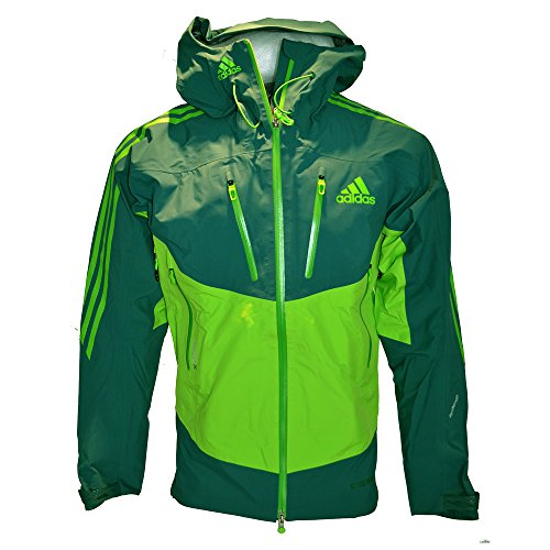 adidas Herren Gore-Tex Pro Outdoor Jacke Terrex IceFeather Jacket (UK-46-48-D-56-F-198, grün)