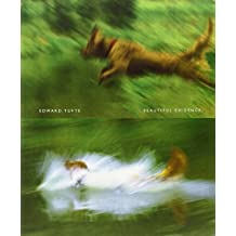 Beautiful Evidence by Edward R. Tufte (2006-07-02)