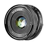 Neewer 32mm F/1,6 Objectif Mise au Point Manuelle Grande Ouverture, pour Sony E-Monture APS-C Caméra Sans Miroir: SONY A7III A9 NEX 3 3N 5 NEX 5T NEX 5R NEX 6 7 A5000 A5100 A6000 A6100 A6300 A6500