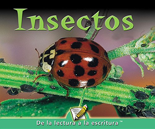 Insectos / Insects (Readers for Writers - Emergent)