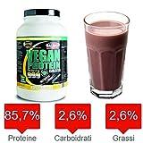Vegan pflanzliches Eiweiß 90% 750 GR Vanillegeschmack .Für Vegetarier und