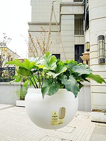 Jardin Pots de fleurs–3L Indoogarden Pots de fleurs–3L Intérieur Extérieur Plastique Forme de bol d'arrosage automatique Pot de fleurs Pots avec chaînes à suspendre Crochet (Blanc)