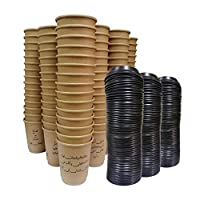 Paper Cup Double Wall Craft 8 ounce - 150 cups 150 lids Coffee Poetry