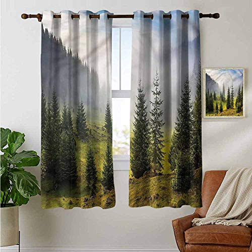 petpany Ösenvorhänge, Wald, in leuchtenden Farben, Verdunkelungsvorhänge für Schlafzimmer Fenster, Polyester, Color09, 42'x45'(W106cmxL114cm)