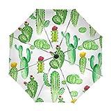 Paraguas Originales Blancos Con Cactus Al Estilo Acuarela