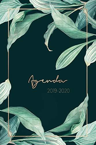 Agenda 2019-2020: Agenda Settimanale 2019 - 2020 | Agenda Giornaliera - Agosto 2019 a Dicembre 2020 - Journalier, Agende, Office e Calendario 2019/2020 | Pianifica i tuoi appuntamenti quotidiani