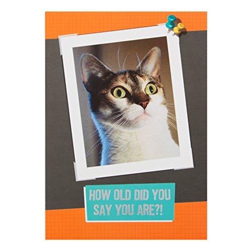 """Hallmark lustige Geburtstagskarte """"Another Year Wiser"""", klein, S"""