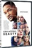Locandina Collateral Beauty (DVD)