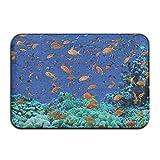 Beautiful bajo el agua peces del océano felpudos al aire libre alfombrillas