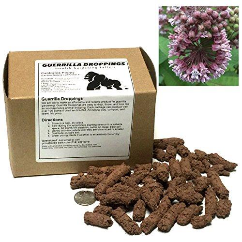 Saatpellets für Guerilla Gardening (Asclepias syriaca) (Guerilla-gardening)