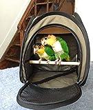 Generic Transportbox für Wellensittiche, für Papageien, für Reisen, tragbar, faltbar, zusammenklappbar